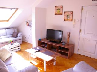 Happy Owl - Studio in Very center! - Belgrade vacation rentals