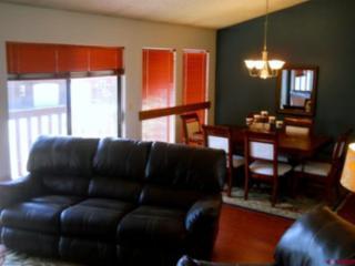 Beautiful Condo with Mountain and Lake Views - Pagosa Springs vacation rentals