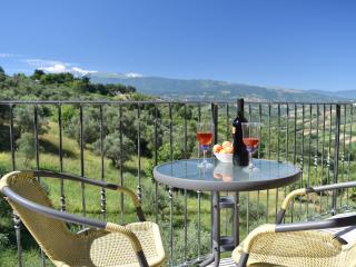 Villa Leonardo Apartments, sleeps 2 - Bucchianico vacation rentals