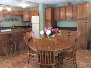 Junaluska Cottage Private Setting w Hot Tub/ WiFi - Lake Junaluska vacation rentals