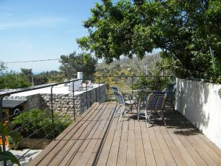 1 bedroom Apartment with Internet Access in Ein Hod - Ein Hod vacation rentals