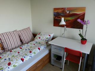 B&B - Nice room with great breakfast - Gothenburg vacation rentals