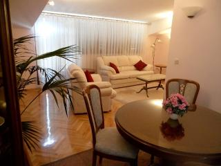 Luxury apartment minutes away from the center - Split vacation rentals
