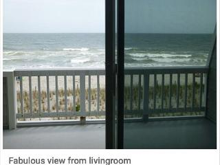 Gorgeous Condo with Deck and Internet Access - Beach Haven vacation rentals