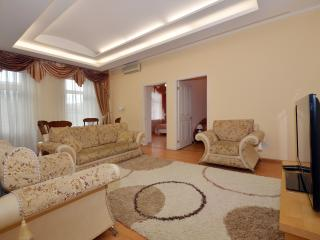 №59 Apartments in Moscow - Moscow vacation rentals