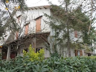 Grande casa di campagna in Maremma Toscana - Roccatederighi vacation rentals