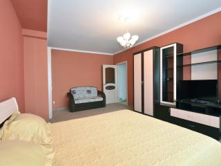 №65 Apartments in Moscow - Moscow vacation rentals