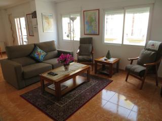 Central Valencia - near Mercado Russafa - Valencia vacation rentals