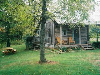 Charming 1 bedroom Cabin in Lexington with A/C - Lexington vacation rentals