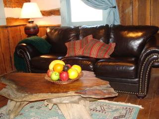 Charming 1 bedroom Cabin in Lexington - Lexington vacation rentals