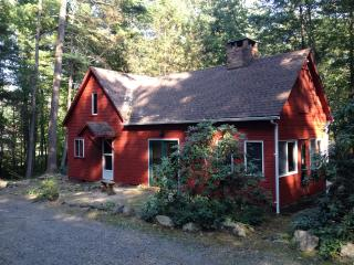 Kingston/Hurley woodland house - Hurley vacation rentals