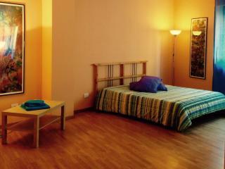 Monferratohouse  apartment Bike Friendly and more - Acqui Terme vacation rentals