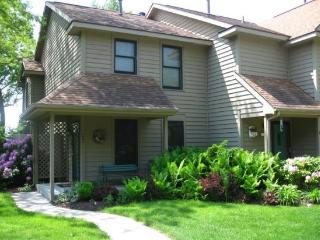 Condo on the Hill - Saugatuck vacation rentals