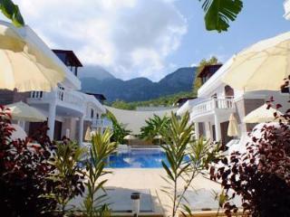 Cozy 3 bedroom Villa in Goynuk with Internet Access - Goynuk vacation rentals
