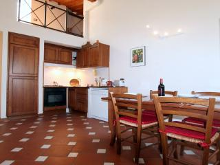Fortezza da Basso Apartment - Florence vacation rentals