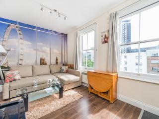 NICE AND COSY 1 BEDROOM FLAT IN ZONE 1 - London vacation rentals