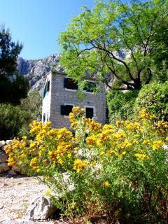 "Dalmation Old House ""KOTISINA"" - Makarska vacation rentals"