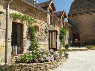 Domaine la Penoterie, gîte la Douce - Montignac vacation rentals
