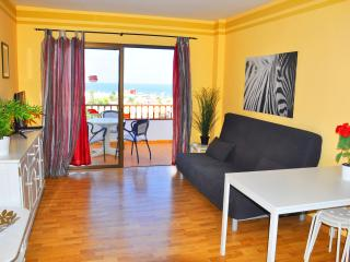 One bedroom apartment close to beach - Playa de Fanabe vacation rentals