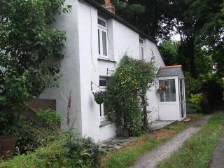 Beautiful  Cottage in valley nr sea- SEPT VACANCY - Redruth vacation rentals