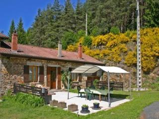Lovely 3 bedroom Gite in Ambert - Ambert vacation rentals