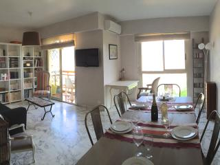 Apartment with air conditioning Nice le Piol - Nice vacation rentals