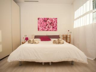 Exclusive apart - via Bixio A/A wi fi  1.1 - - Milan vacation rentals