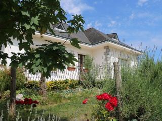 A la découverte de Nantes, grande maison familiale - Thouare-sur-Loire vacation rentals