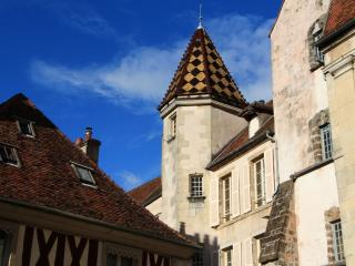 2 bedroom Condo with Internet Access in Semur-en-Auxois - Semur-en-Auxois vacation rentals