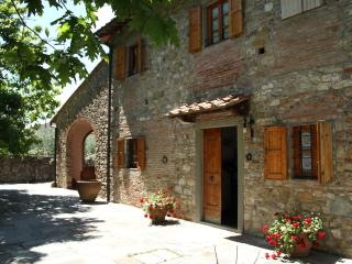 Very nice house with olive grove in Tuscany - Florence vacation rentals
