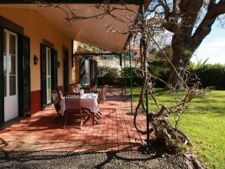 Lovely 1 bedroom House in Funchal - Funchal vacation rentals