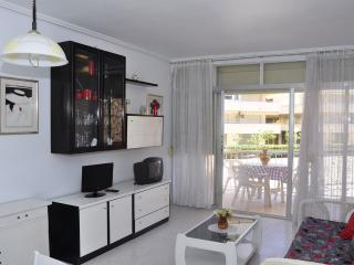Nice Condo with Short Breaks Allowed and Elevator Access - La Pineda vacation rentals