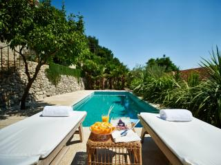 Villa Lemonia with Private Pool and Sea View - Trsteno vacation rentals