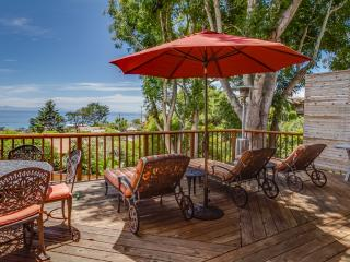 Charming 3 bedroom House in Summerland - Summerland vacation rentals