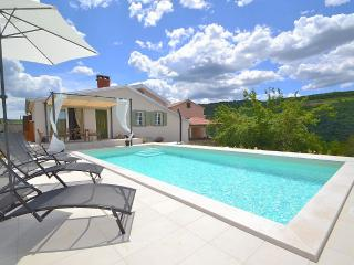 Charming 2 bedroom Villa with pool near Motovun - Vizinada vacation rentals