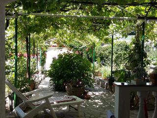 Vela - Novi App with garden view - Novi Vinodolski vacation rentals