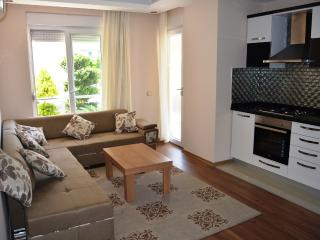 Comfortable Condo with Internet Access and A/C - Antalya vacation rentals