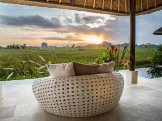 Enjoy a second Honey Moon? - Ubud vacation rentals