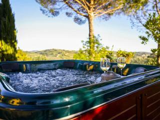 Tuscan Sun Villa - Florence vacation rentals