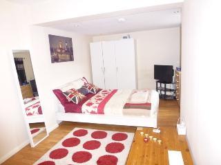 Lovely Studio, West Ham,Olympic village,London,E15 - London vacation rentals