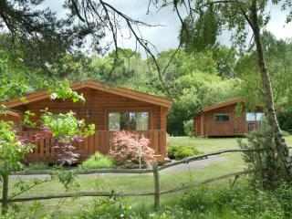 Cottesmore Lodges - Pease Pottage vacation rentals