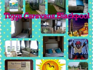 ANGELA Haven Marton Mere Blackpool - Blackpool vacation rentals