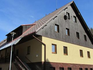 1 bedroom Condo with Internet Access in Dolni Morava - Dolni Morava vacation rentals