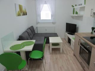 Nice Condo with Internet Access and Freezer - Dolni Morava vacation rentals