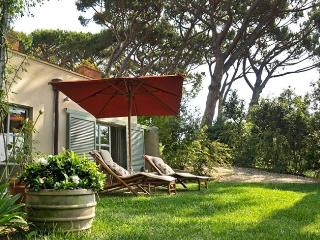 Perfect House with Internet Access and Dishwasher - Marina di Bibbona vacation rentals
