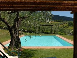 Nice 4 bedroom House in San Pietro a Marcigliano with Internet Access - San Pietro a Marcigliano vacation rentals