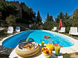 Chianni Terrace - Chianni vacation rentals