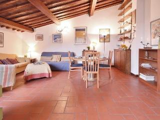 Gaia - Florence vacation rentals