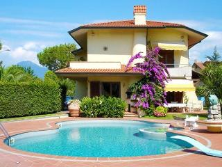 Nice Villa with Internet Access and Shared Outdoor Pool - Lido Di Camaiore vacation rentals