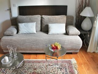 Romantic Condo with Internet Access and Dishwasher - Ferrette vacation rentals